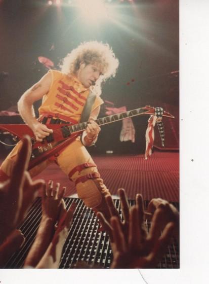 1984 dallas