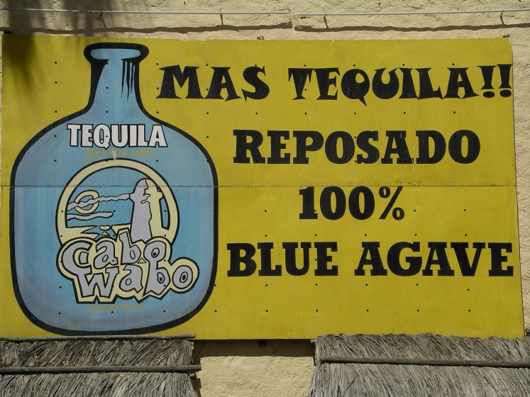 Cabo Wabo Tequila Sign at the Cantina 2003