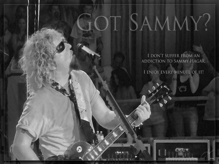 Got Sammy?