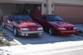 Red Rocker Loves RED MUSTANGS!
