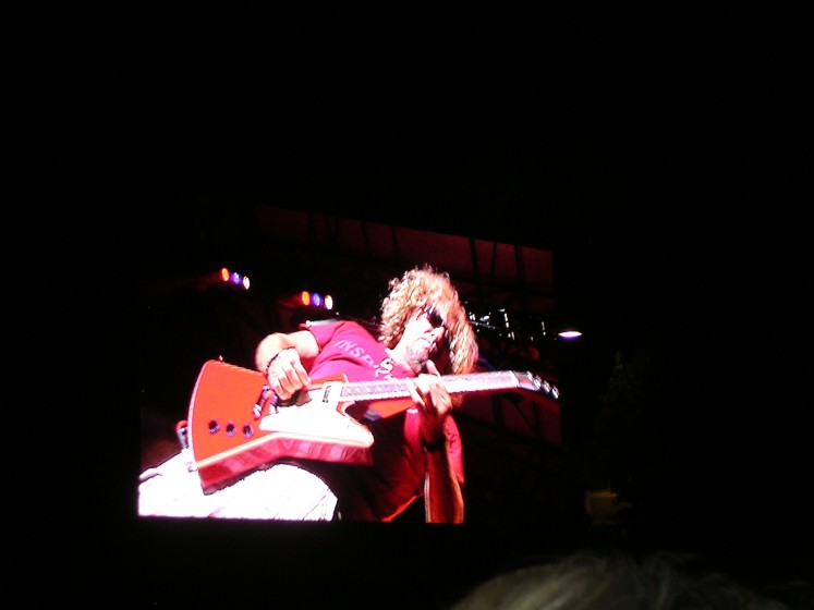 Rockin' The Guitar