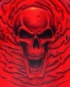 Deadhead's picture